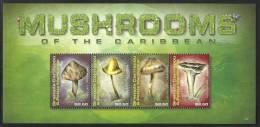 grs0909sh Granada Carr. 2009 Mushroom s/s