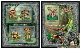 CENTRAL AFRICA 2012 - Mushrooms, Spider Web - YT 2372-5 + BF457 - Spinnen