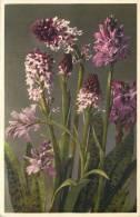 THEMES - FLEURS - Orchis Maculatus - Flores, Plantas & Arboles