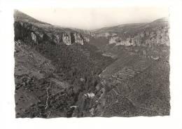 Photo, Lieu, Vallée De La Jonte (48), Vue Panoramique - Dim. : Env : 9 X 6.5 Cm - Orte