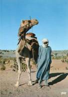Afrique >Republique du TCHAD - Chamelier  (-Editions: librairie  Akhbaar 5427)* PRIX FIXE