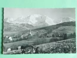 COMBLOUX - Vue Générale Et Le Mont Blanc - Combloux