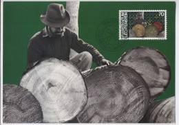 MENSCH UND ARBEIT 1982 MAXIMUM CARD - Cartoline Maximum