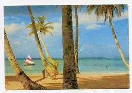 TRINIDAD & TOBAGO  - AK144572 Tobago - Pigeon Point - Seen Through The Coconut Palms - Trinidad