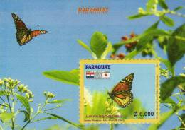 Paraguay / S/S / Butterflies - Paraguay