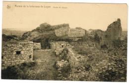 Ruines De La Forteresse De Logne, Accès Du Donjon (pk8449) - Ferrières