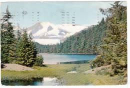 Juneau Alaska - Advertising For Doctors - Pentothal Sodium Abbott - Stamp & Postmark 1959 - 2 Scans - Liechtenstein