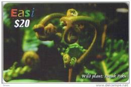 Brunei, $20, Easi, Wild Plant, Flower, 2 Scans. - Brunei