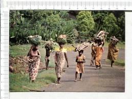 COMORES -  ANJOUAN  -  Retour Des Champs - Comores