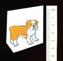 Petit Autocollant Sticker / Animal Chien Bouledogue / Dog Bulldog // BIM 105 - Trade Cards