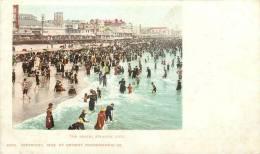 Réf : A -13- 1732 : Atlantic City - Atlantic City