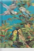 MATERIAL - 3D - Vögel - Wellensittiche - Postcards