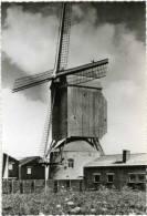 MEULEBEKE (W.Vl.) - Molen/moulin - Oudere Zwart-wit Kaart Van De Herentmolen, Een Staakmolen Op Torenkot (ca. 1960) - Meulebeke