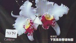 Télécarte Japon FLEUR * ORCHID (3234) Orchidée Orquídea Orchidee Orquidée Orchid * Flower Phonecard Japon - Bloemen