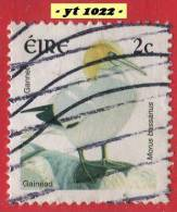1997 - Europe - Irlande - 2 P. Fou De Bassan ( Morus Bassanus ) -