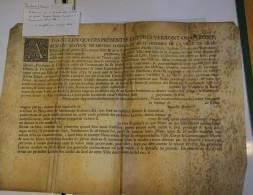 MANUSCRIT SUR PARCHEMIN DE LA VILLE DE LILLE 1727 A VOIR - Manuscrits