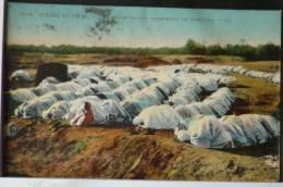 Algerie Scenes Et Types Grande Priere Terminant Le Ramadan LL Voyagé 1924 Timbre Cachet Alger Palais D´ Ete 532 - Scenes