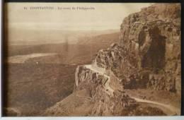 Algerie Constantine La Route De Philippeville Magasin Globe Voyagé 1926 Cachet Ambulant - Constantine