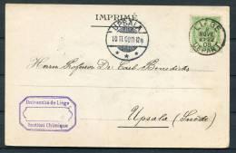 1908 Belgium Leige Universite Institute Chemique - Upsala Sweden Postcard - Chemistry