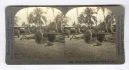 SV: Mission Home Grounds, Island Of Guam, 1910s - Guam