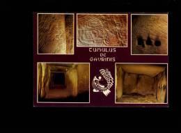 GAVRINIS EN LARMOR BADEN Morbihan 56790 : Le Tumulus De Gavrinis Sculptures Et Chambre Funéraire - Larmor-Plage