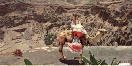 (129) Spain - Grand Canarias Island - Bandama Gorge & Women On Camel - Gran Canaria