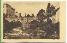Landeck Johannesbrücke Um 1910/1920 Verlag:Leo Richter, Bad Landeck  , Postkarte, Unbenutzte Karte - Schlesien