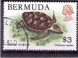 Yv.368 - Obl/gest/used - Tortue - Turtle - Bermudes