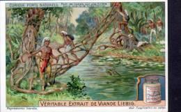 CHROMO - LIEBIG - CURIEUX PONTS NATURELS - Liebig