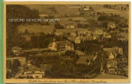Bad Flinsberg Im Isergebirge, Luftbild Um 1900/1910 Verlag:L. Niepel-Brodt, Friedeberg, POSTKARTE Unbenutzte Karte - Schlesien
