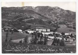 Carpegna - Il Monte Carpegna - Pesaro - Urbino - H1064 - Pesaro