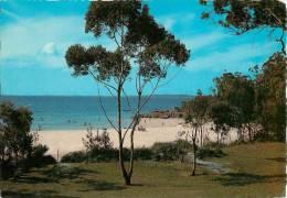 CPSM Australie-Huskisson-Jervis Bay    L1201 - Australie