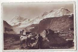 Auf Dem Wege Nach Schwarzsee - Breithorn - VS Valais