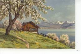 Paysage Chalet - Cartes Postales