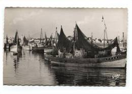 6161 - Guilvinec (29) Le Port - Guilvinec