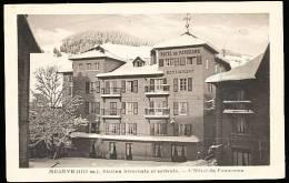 74 MEGEVE / Hôtel Du Panorama / - Megève