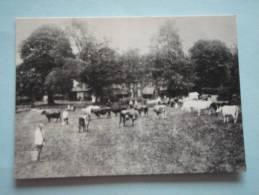 26198  REPRODUCTION  PC: SURREY: Coombe Farm 1892. CROYDON PUBLIC LIBRARIES. - Altri