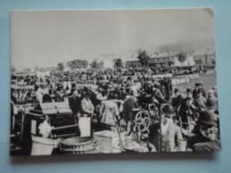 26200  REPRODUCTION  PC: SURREY: Croydon Fair, South Croydon 1894. CROYDON PUBLIC LIBRARIES. - Altri