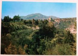 SUBIACO - Tor S.Mauro E Panorama - Unclassified