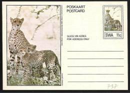 Sud Africa Occidentale (SWA): Intero, Stationery, Entier, Ghepardo, Cheetah, Guépard - Roofkatten