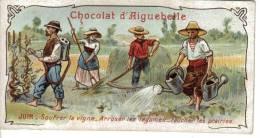 Chromo Chocolat D´Aiguebelle Juin Vigneron Soufrer La Vigne Agriculture Arroser Légumes Faucher Prairies - Aiguebelle