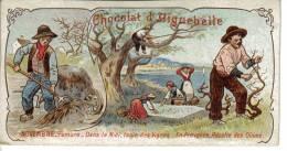 Chromo Chocolat D´Aiguebelle Novembre Fumure Fumier Taille De La Vigne Récolter Les Olives - Aiguebelle