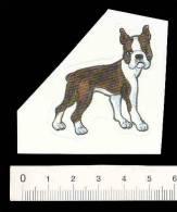 Petit Autocollant Sticker / Boston Terrier  /  Animal Chien Dog  // BIM 105 - Chromos
