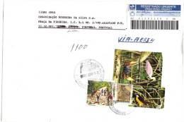 TIMBRES - BRÉSIL - 2006 - LETTRE RECOMMANDÉE - TIMBRES DIVERS  FAUNE ET FLORE-Ajaia Ajaia -Pitangussulphuratus -OBLITÉRÉ - Other