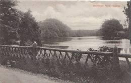 Hampshire Postcard - Wishanger Pond, Headley  V492 - Other