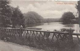 Hampshire Postcard - Wishanger Pond, Headley  V492 - Angleterre