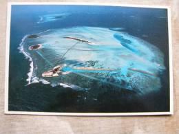 Maldives - Pal Tree Island Veligandu Huraa -Dhigufinolhu Island - Bodu Huraa Island    D94867 - Maldives
