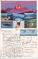 Argentina Airmail Postcard Stamps, Animals, Birds Postal Markings (9690) - Storia Postale