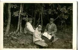 CARTE PHOTO  -  3 MILITAIRES DANS UN BOIS 1 JOURNAL A LA MAIN - Cartes Postales