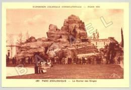 Paris (75) - Parc Zoologique - Le Rocher Des Singes (JS) - Singes